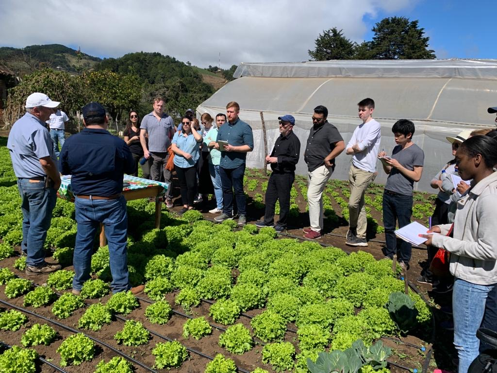 ElSalvador.com – NYU students learn to replicate Super Selectos Cultivating Opportunities program model
