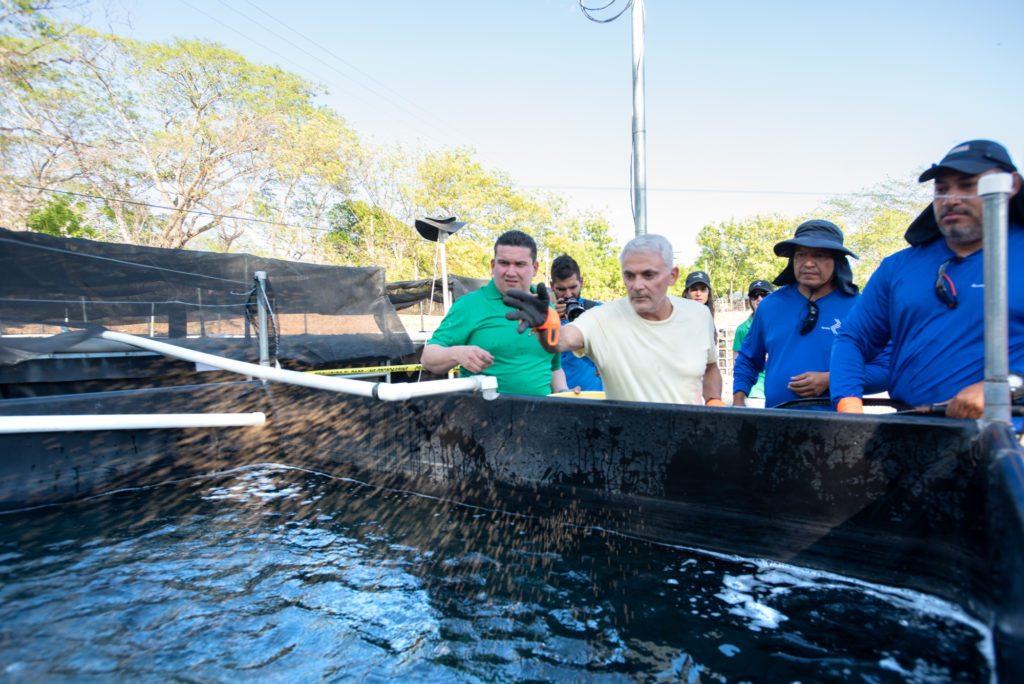 Frank Giustra visits Acceso El Salvador's new hatchery and recognizes Spring Genetics' tilapia outstanding qualities